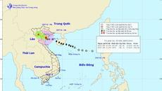 Bão giật cấp 13, tàn phá Thái Bình - Ninh Bình