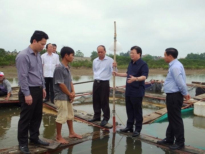 Chính phủ nghiêm túc rút kinh nghiệm sau vụ Formosa