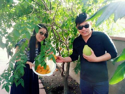 Vườn nhà ở Mỹ trĩu trịt cây trái Việt của Quang Lê