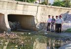 Đà Nẵng: Chấp nhận bãi biển ô nhiễm vì chưa có kinh phí