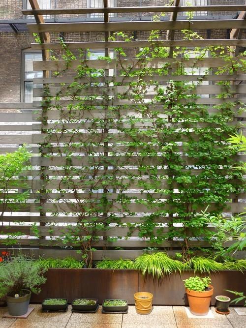 20160801112704 san thuong3 Chia sẻ 4 ý tưởng cho vườn trên sân thượng chuẩn không cần chỉnh bạn nhất định phải thử