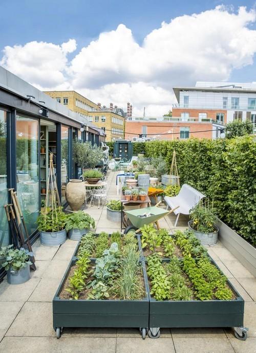 20160801112704 san thuong7 Chia sẻ 4 ý tưởng cho vườn trên sân thượng chuẩn không cần chỉnh bạn nhất định phải thử