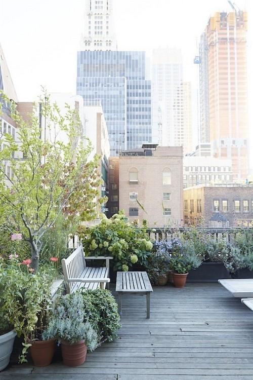 20160801112704 san thuong8 Chia sẻ 4 ý tưởng cho vườn trên sân thượng chuẩn không cần chỉnh bạn nhất định phải thử