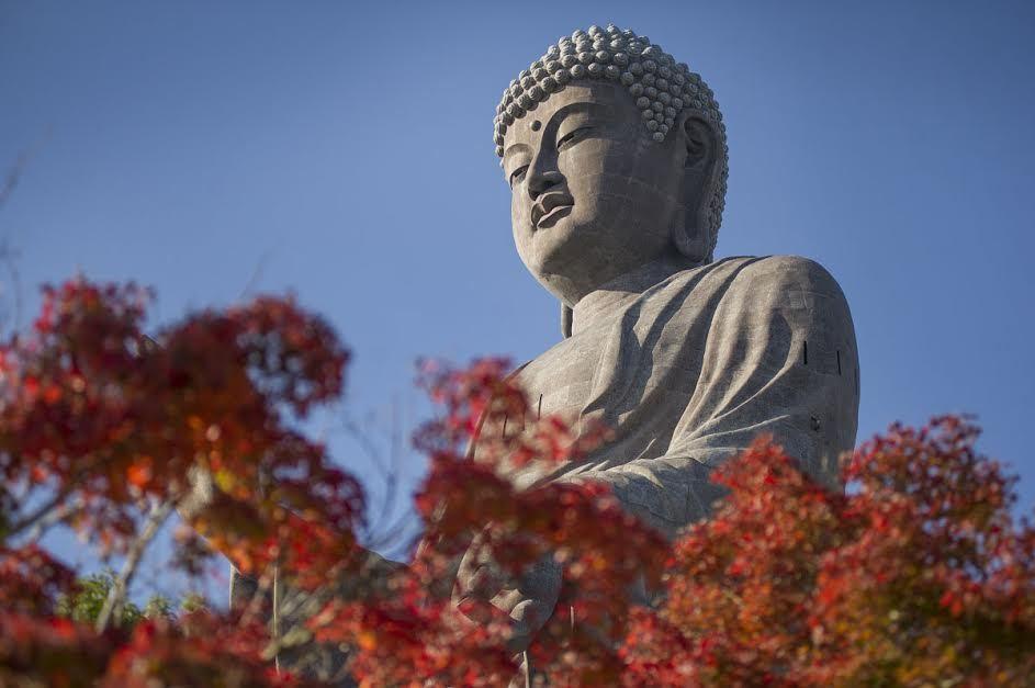 Điều đặc biệt về bức tượng Phật lớn nhất thế giới.