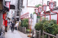 Lịch trình 9 ngày vi vu ở Nhật Bản với 40 triệu đồng