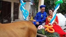 Chú rể Tây đẹp trai rước dâu bằng xe bò kéo gây sốt