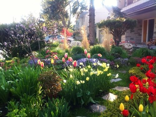 thiết kế vườn, khu vườn đẹp, kiến trúc sư cảnh quan