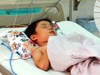 Lọc máu suốt 2 ngày cứu bé trai 6 tuổi bị ong đốt nguy kịch