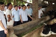 Sẽ kiểm soát đặc biệt các chất cấm trong chăn nuôi