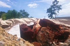 Dân Đà Nẵng bắt quả tang công ty lén chôn chất thải