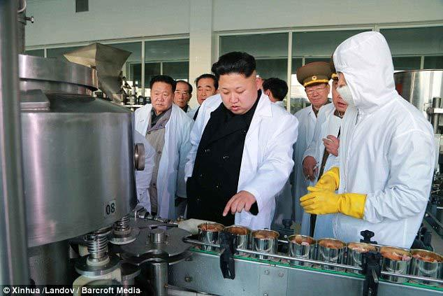 Kim Jong Un kêu gọi người dân ăn thịt chó