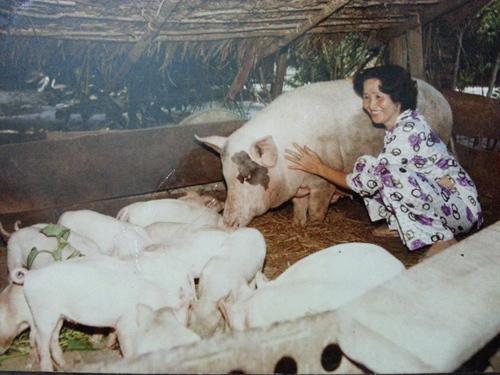 Hoài Linh, Dương Triệu Vũ