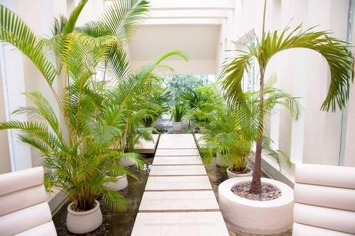 thiết kế sân vườn đẹp, trang trí sân vườn, mẫu sân vườn đẹp