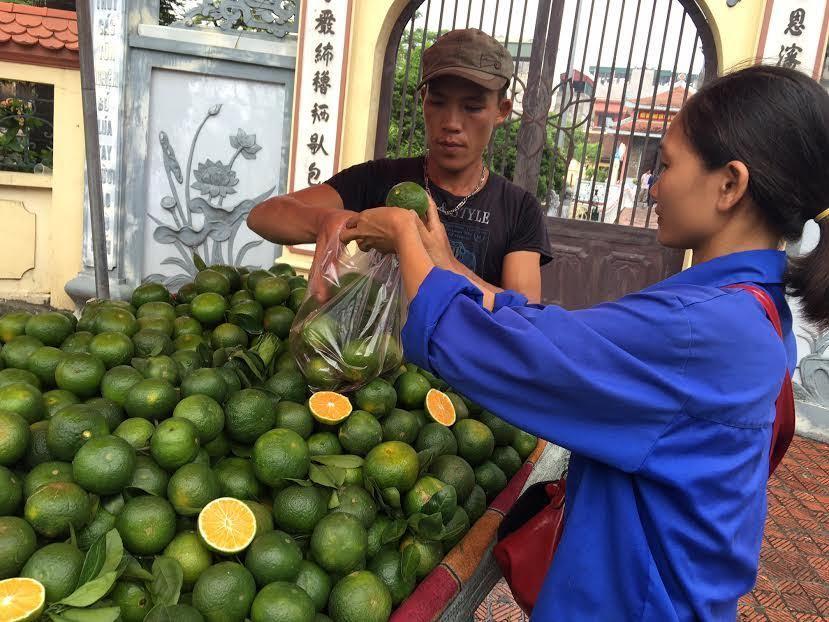 100 tấn cam Tàu/ngày: Dân Hà thành mua biếu tặng nhau