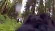 Quay được hình ảnh quái vật Bigfoot ở rừng?