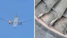 CLIP: Máy bay Qatar bốc cháy dữ dội trên không