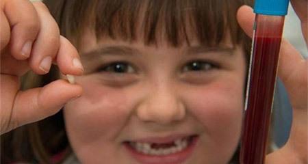 Đừng vứt răng sữa bởi chúng có thể cứu mạng con bạn trong tương lai