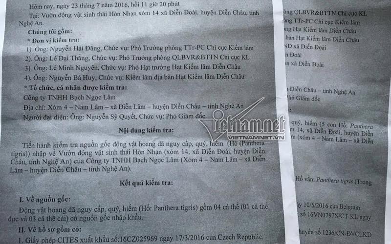 Vợ trùm buôn hổ Nghệ An được phép… nhập 9 con hổ