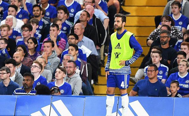 Bị Conte hắt hủi, Fabregas quyết chiến giành vị trí