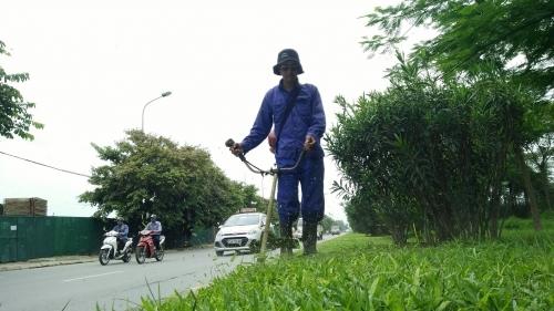 dự án cắt cỏ tiền tỷ, Hà Nội cắt cỏ tiền tỷ, tiền cắt cỏ đại lộ Thăng Long