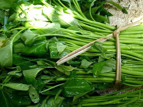Nhận biết 8 loại rau củ dùng nhiều chất kích thích tăng trưởng
