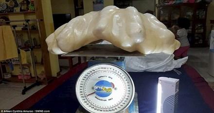 Lão ngư cất viên ngọc trai 34kg dưới gầm giường