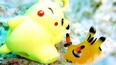 """Nhật: Game thủ Pokemon Go phát sốt vì """"Pikachu đời thực"""""""