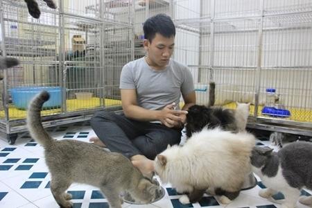 nghề lạ, kiếm tiền tỷ, Hà Nội, Sài Gòn, chăn trâu, buôn lá tre, nuôi mèo