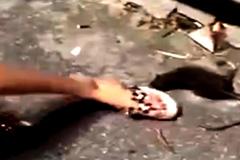 Thiếu nữ đùa với chuột và hậu quả khủng khiếp