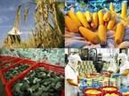Bộ Nông nghiệp 'xin' 96.000 tỷ để tái cơ cấu