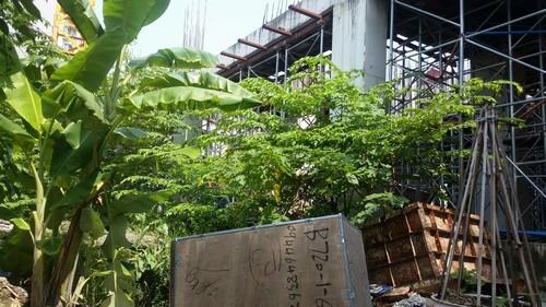 chung cư 134 Quần Ngựa, dự án trên đất vàng bỏ hoang, dự án bỏ hoang