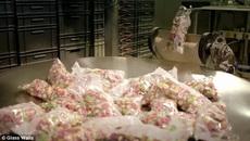 Rùng mình với quy trình sản xuất phụ gia có trong thạch, bánh kẹo cho trẻ em