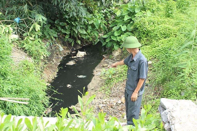 Công ty môi trường, xả thải, khu dân cư, vịnh Hạ Long