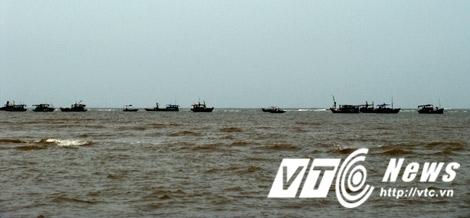 Đại gia bí ẩn mua con cá vàng 1,5 tỷ đồng ở Thái Bình