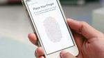 Apple bị kiện hàng loạt về lỗi màn hình iPhone 6