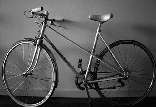 tivi, xe đạp Thống Nhất, mũ cối, tài sản, quạt điện, xe máy, đại gia, thú chơi, Hà Nội