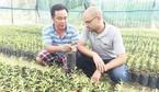 Áy náy với sinh viên, hiệu trưởng bỏ trường về làm vườn
