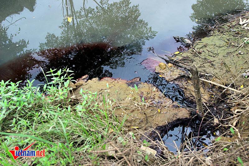 Dòng nước đỏ như máu bủa vây ngôi làng ở Hà Nội