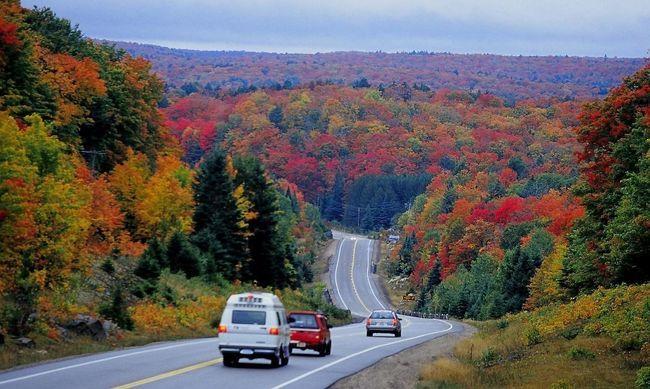 Mùa Thu, Thu sang, Canada, lá vàng bay, Không khí mùa thu, Du lịch Canada, Mùa thu 2016