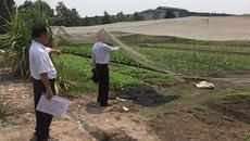 Tạm dừng cưỡng chế lô đất hơn 10 tỷ bị bán oan