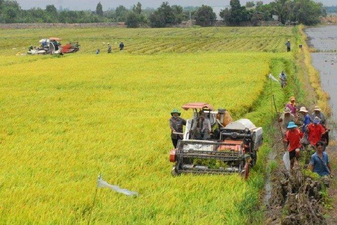 Nông nghiệp, nông thôn, Nông thôn mới