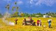 Xa trung tâm, vắng đầu tư, nông thôn loay hoay đổi mới