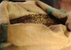 Cà phê trộn có đáng quan ngại?