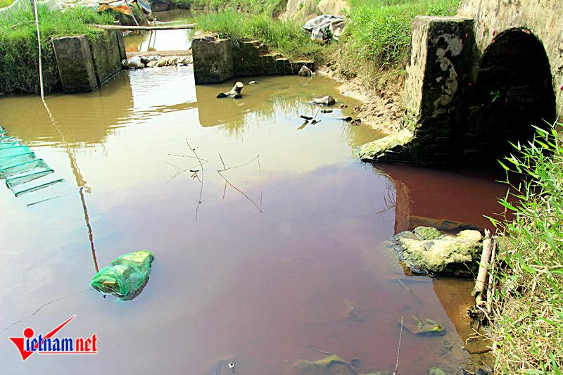 Hà Nội: Xử phạt công ty 'xả thải đỏ như máu' 7,5 triệu