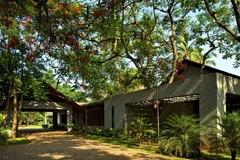 Ngôi nhà mái ngói rộng thênh thang, xanh mướt mắt trên mảnh đất hơn 4000m²