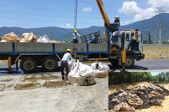 Toàn cảnh vụ chôn lấp chất thải Formosa