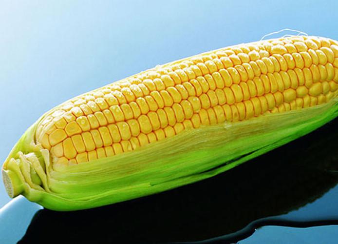 Tác hại của ngô và những người nào không nên ăn ngô?