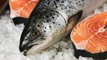 Đặc sản cá hồi: Việt Nam ngon bổ, thế giới cực độc
