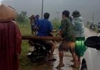 20 kẻ quây đánh kiểm lâm, tẩu tán gỗ bằng xe máy