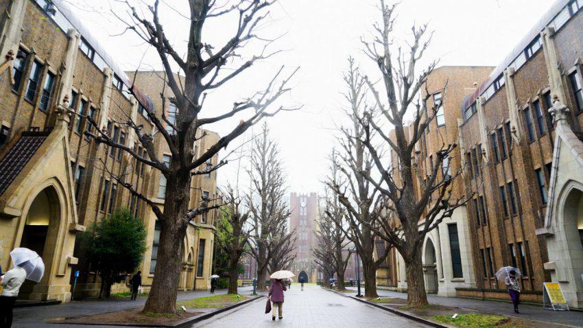 ĐH Tokyo, điều tra gian lận, báo cáo khoa học